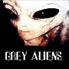 Grey Aliens