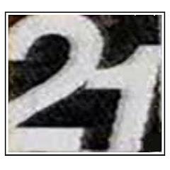 raiking21