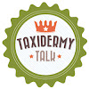 Taxidermy Talk Forums