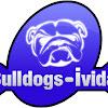 BulldogsiVidal
