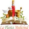 LaPlantaMedicinal