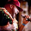 Fiji The Artist