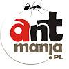 Antmania Tv