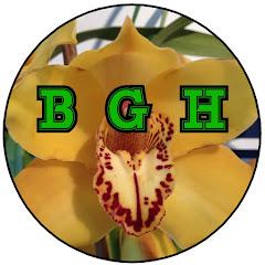 Brads Greenhouse & Gardening
