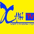 Xanh TV
