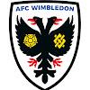 AFC Wimbledon TV