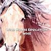 WildHorseEducation