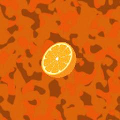 orange451