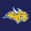 Webster Athletics