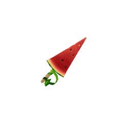 watermelon express