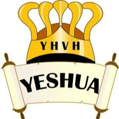 Nkauj Ntseeg Yeshua Messiah YouTube Statistics - Detailed