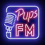 PupsFM и Crossout пустоши