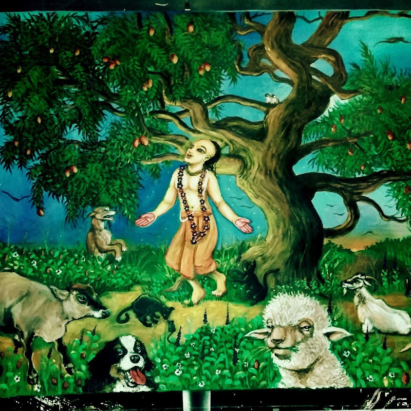 Jarikhanda Sanctuary Farm (jarikhanda-sanctuary-farm)