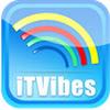 ITVibes (Web Design & Marketing)