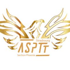 Phoenix Taekwondo