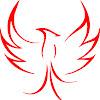 TUM Phoenix Robotics