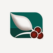 AlSaeedah Channel- قناة السعيدة الفضائية