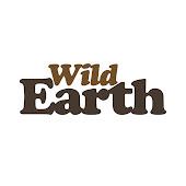 safariLIVE Channel Videos