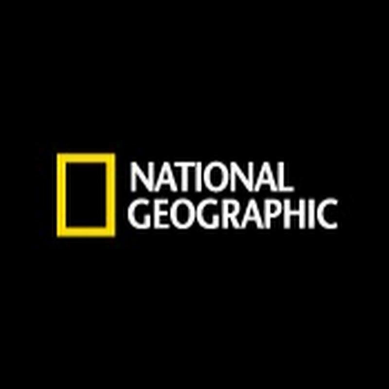 내셔널지오그래픽 - national geographic korea