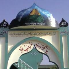 Gulshanaychishtia