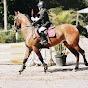 Ally Equestrian&Games