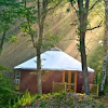 Shelter Designs Yurts
