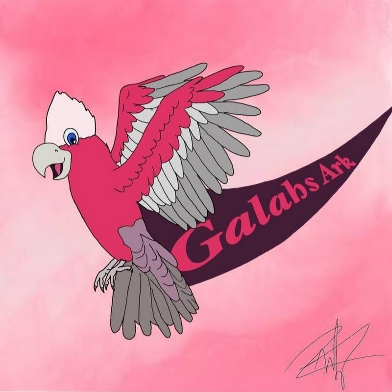 Galahs Fish Tanks (galahs-fish-tanks)