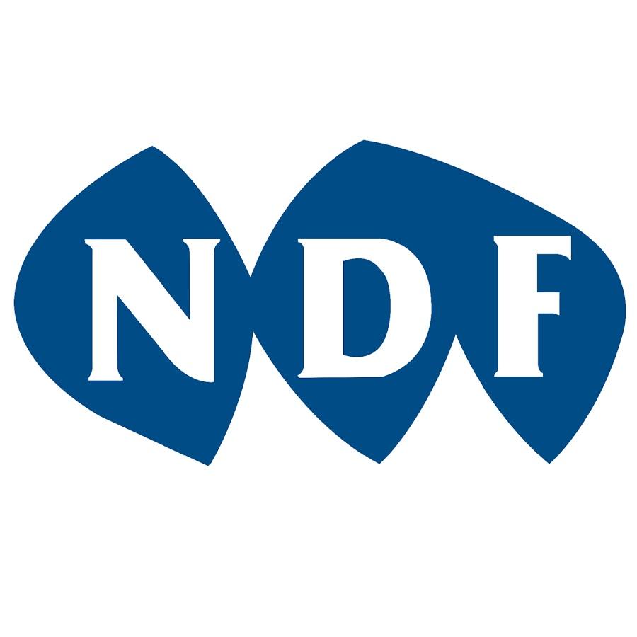 Ndf News Youtube
