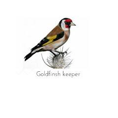 GoldFinshKeeper