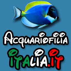 AcquariofiliaItalia