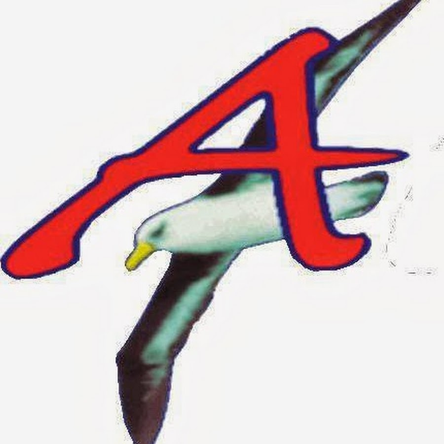 Progetto albatros software youtube for Progetto software