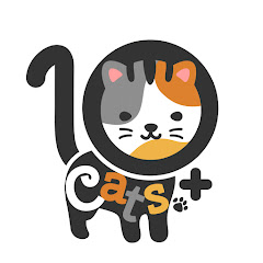 10 Cats.ᐩ YouTube channel avatar
