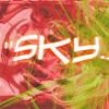 sky022