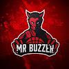 Mr Buzzer