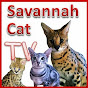 SavannahCatTV