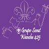 Grupo Scout Wanche 425