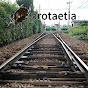 Protaetia
