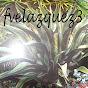 fvelazquez3 on substuber.com