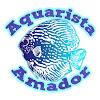 Canal do Aquarista Amador por Rafael Rohden