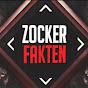 Zockerfakten  Youtube video kanalı Profil Fotoğrafı
