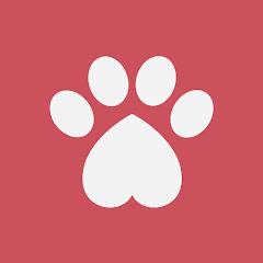 Meu AUmigo Cão