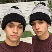 Lucas And Marcus Dobre Brothers Lifestyle Girlfriend Net Worth