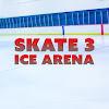 SKATE 3 ICE ARENA