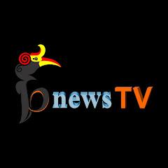 bnewstv beraunews