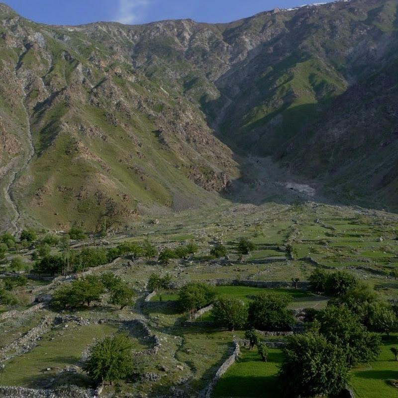 Afghan music Attan by 'Qandi Kochey' beautiful music | FunnyCat TV