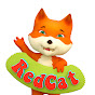 Red Cat - Animals For