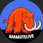 MamuteLIVE