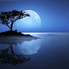 Gece Mavisi