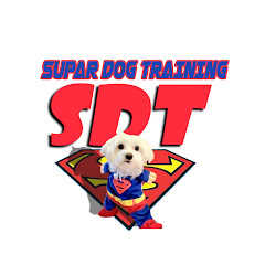 SUPAR DOG TRAINING CHANNELS YouTube Channel Statistics & Online