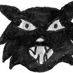CAT7thst